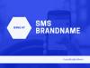 Vì sao nên sử dụng SMS Brandname (Tin nhắn thương hiệu) ?