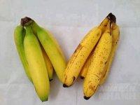 Phân biệt 9 loại quả phổ biến chín cây hay chín thuốc?