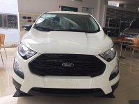Ford EcoSport 2018 - Dòng SUV đáng mua ở thời điểm hiện nay
