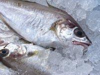 Khô cá đặc sản 3 miền