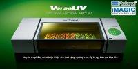 Máy in UV - in ốp lưng, quà tặng, inox, nhựa, kính, pha lê, gỗ - Roland VersaUV LEF200/ LEF300
