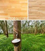 Gỗ cao su giá kho - nội thất gỗ cây cao su giá sỉ Quảng Ngãi
