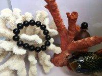 Hướng dẫn phân biệt san hô đen hay cây dương biển thật giả