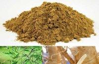 Tác dụng của saponin trong cao dược liệu đinh lăng