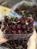 Mua hộp nhựa có lỗ đựng 1kg trái cây