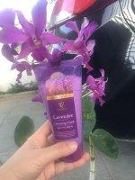 Tìm hiểu về Kem rửa mặt Lavender