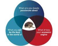Chiến lược con nhím - Sử dụng sức mạnh của sự giản đơn để thành công