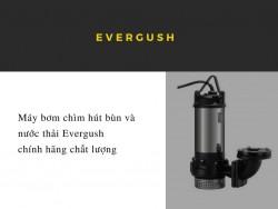 Máy bơm chìm hút bùn và nước thải Evergush chính hãng chất lượng