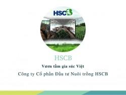 Công ty Cổ phần Đầu tư Nuôi trồng HSCB