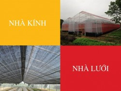 So sánh nhà lưới và nhà kính