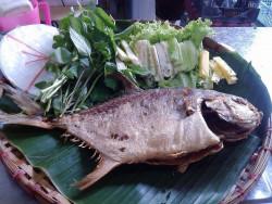 PGS.Thịnh hướng dẫn cách rán cá tránh bệnh ung thư
