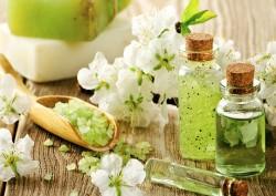 Những điều chưa biết về dòng mỹ phẩm Organic