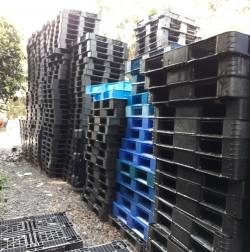 Mua bán Pallet nhựa Thanh Hóa