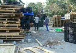 Mua pallet nhựa thanh lý tại Đồng Nai