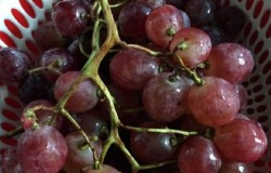 12 loại trái cây cực tốt cho sức khỏe phụ nữ