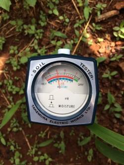 Bút đo ph đất và độ ẩm đất giá rẻ