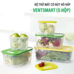 Hộp bảo quản thực phẩm  trữ mát Vensmart của Tupperware khuyến mãi siêu hot