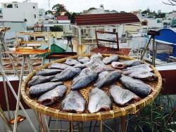 Đặc sản khô cá sặc 1 nắng miền Tây