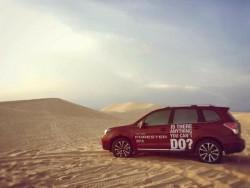 Khách hàng lái thử xe Subaru | Đăng ký lái thử xe tại Subaru Việt Nam