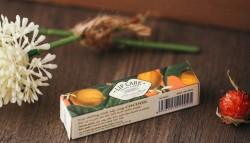 Son dưỡng môi Cocoon - Lip Care - Loại son bảo vệ môi cho bạn tốt nhất không chỉ vào mùa Đông