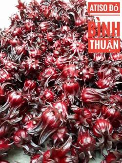 Tác dụng của hoa Atiso Đỏ Bình Thuận