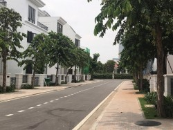 Sự thật sau chiêu trò cắt máu chốt sale của môi giới bất động sản, 77737, Trương Võ Tuấn, , 28/12/2017 12:07:15
