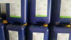 Một số lưu ý sử dụng chế phẩm vi sinh trong nuôi tôm