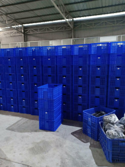 Thuận Thiên chuyên cung cấp sóng nhựa 3T1
