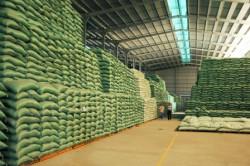 Chọn lựa bao bì đựng bột mì xuất khẩu