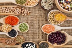 Top những loại đậu và hạt giàu chất xơ bạn nên ăn