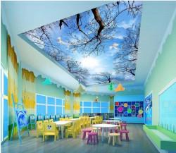 Mẫu trần nhà xuyên sáng đẹp và ấn tượng