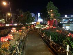 Dịch vụ trang trí Halloween quận 2, TPHCM