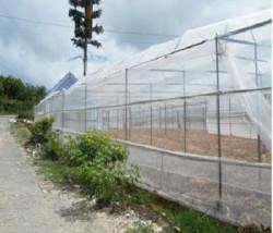 Công ty IMG - Kinh doanh các loại lưới chắn côn trùng cho cây trồng, vườn ươm, vật nuôi uy tín, giá rẻ
