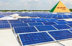 Pin năng lượng mặt trời chất lượng tại Heveda