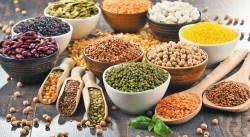 Các loại đậu: có chất có hại như bạn nghĩ?