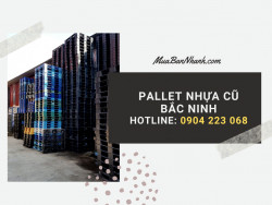 Pallet nhựa và nhu cầu trong công nghiệp sản xuất