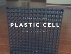 Ứng dụng của tấm plastic cell - vỉ nhựa thoát nước vườn trên mái