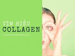 Collagen - Chìa khóa giữ gìn nhan sắc phái đẹp