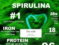 Tác dụng của tảo xoắn Spirulina