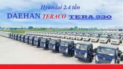 Dòng xe tải nhẹ Hyundai Daehan Tera 230 mới ra mắt
