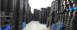 So sánh tấm Pallet nhựa và Pallet gỗ truyền thống