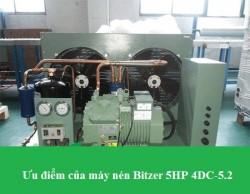 Ưu điểm của máy nén Bitzer 5HP 4DC-5.2 chuyên dùng trong kho cấp đông công nghiệp