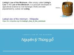 Nguyên lý Thùng gỗ (Liebig's Law of the Minimum) - Nguyên lý kinh doanh kinh điển mà dân kinh doanh phải hiểu