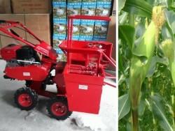 Máy thu hoạch ngô mini giá rẻ