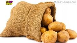 Bài học quý giá từ túi khoai tây