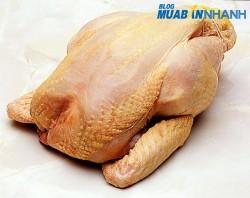 Cách nhận biết gà bị bơm nước và nhuộm vàng