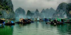 Ghé thăm làng chài đẹp nhất thế giới ở vịnh Hạ Long