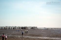 Những bãi biển hoang sơ quanh Sài Gòn