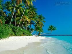 Bãi Dài đảo Ngọc– Bãi biển hoang sơ nhất thế giới