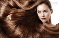 Mẹo sử dụng dầu dừa trị rụng tóc